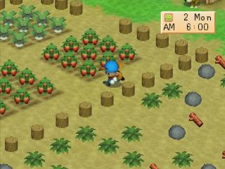 12+ Panduan Lengkap Main Harvest Moon Back to Nature, dari Awal hingga Akhir