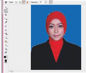 Cara Mengganti Warna Background foto menjadi biru di coreldraw